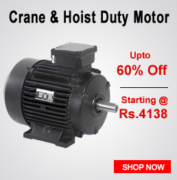 Crane & Hoist Duty Motors