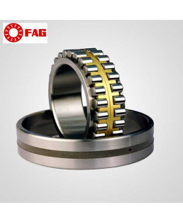FAG Spherical Roller Bearing-22205-E1