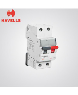 Havells Double Pole 63A MCB-DHMGDDPF063