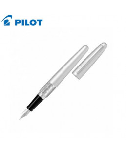 Pilot Metal Fountain Pen-9000017776