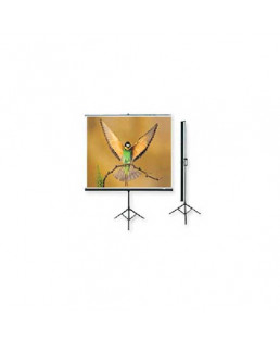 Microtec Multimedia Projection Screen With Metallic Stand-150x150 cm