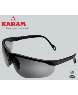 Karam Executive's Choice black Safety Goggle-ES 005