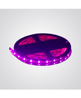 Ryna Pink Colour LED Strip Light 5 Meters Each (Non Water Proof)-Pack Of 1