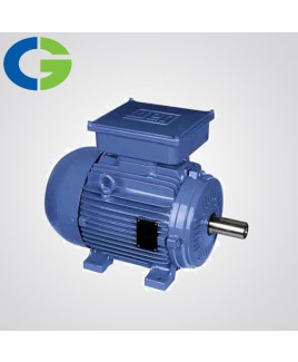 Crompton Greaves Single Phase 1 HP 4 Pole AC Induction Motor-GF6782