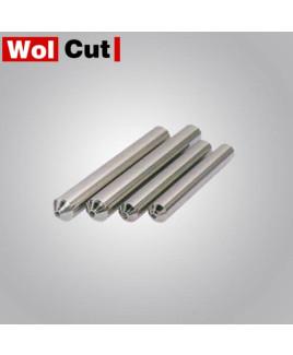Wolcut  0.75 Diamond Dresser