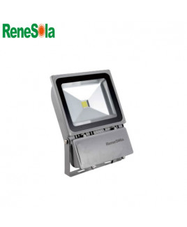 Renesola 10W LED Flood Light-RFL010X0102