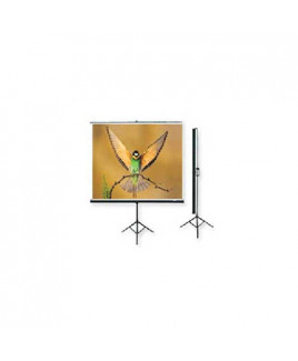 Microtec Multimedia Projection Screen With Metallic Stand-125x125 cm