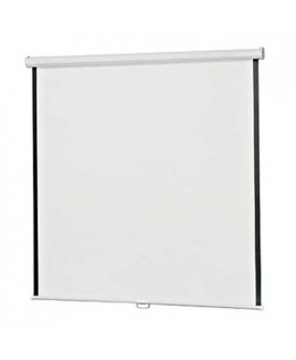 "Wall Mounted Projection Screen-8""x6"""